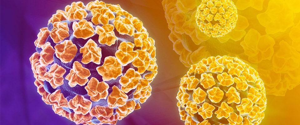 papilomavirus în tratamentul femeilor